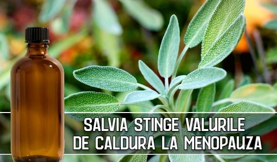 Salvia stinge valurile de caldura la menopauza