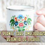 7 plante care ameliorează retentia de lichide in corp (edeme)