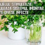 Patrunjelul stimuleaza si moduleaza sistemul imunitar, combate divese infectii