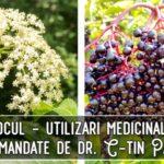 Socul (flori si fructe) – utilizari medicinale recomandate de dr. C-tin Parvu