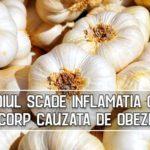 Usturoiul scade inflamatia cronica din corp cauzata de obezitate