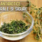 7 antibiotice naturale si sigure