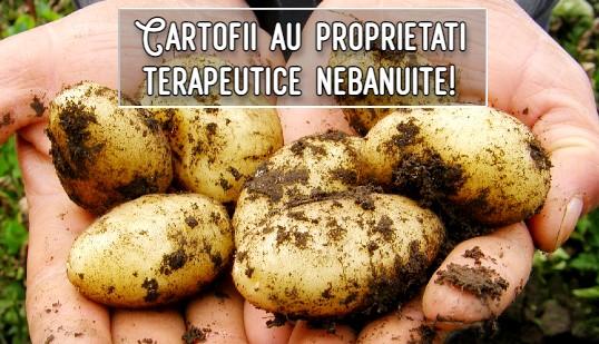 Cartofii au proprietati terapeutice nebanuite!