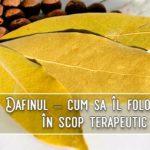 Dafinul – cum sa il folosesti in scop terapeutic