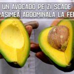 Un avocado pe zi scade grasimea abdominala la femei
