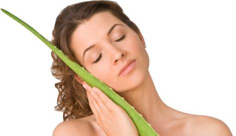 Aloe Vera – Un Miracol Nobil Pentru Sănătatea Ta