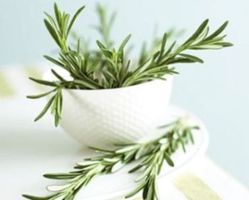 Beneficii de sănătate Rozmarinul (Rosmarinus officinalis) se poate administra în scop terapeutic atât intern - sub formă de ceai, decoct sau infuzie, cât şi extern, sub formă de comprese, băi, creme, geluri sau loţiuni care conţin ulei de rozamrin cu efect în ameliorarea durerilor reumatice sau a problemelor de circulaţie sangvină periferică deficitară. Ceaiul de rozmarin este un remediu excellent pentru tratarea problemelor de la nivelul aparatului digestiv şi sistemului nervos.