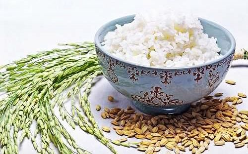 otet de orez