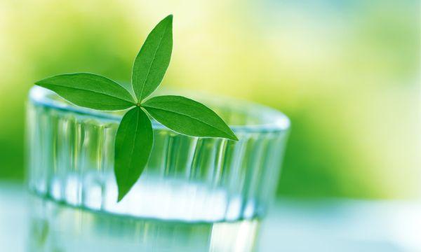 Gingii umflate – Remedii naturiste