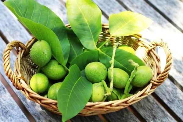 Sirop și Lichior de Nuci Verzi – Rețete Medicinale