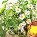 Prurit - Tratamente Naturiste