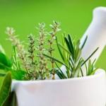 Plante Anti-Sida