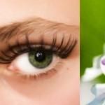 Keratita - Plante Pentru Ochi