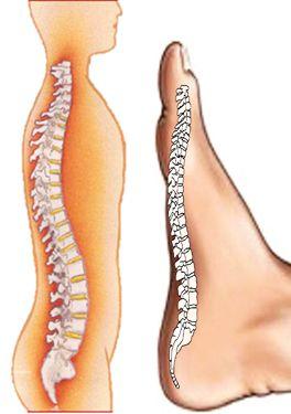 Durerea articulara ?i umflarea pe jos