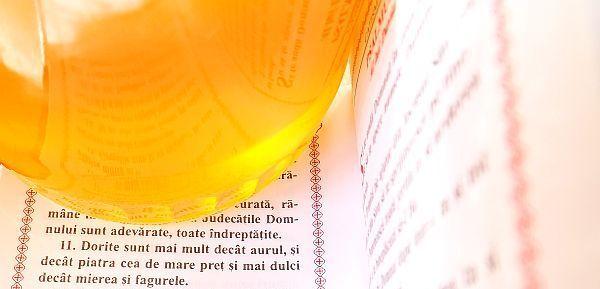 Mierea de Albine - Aliment Biblic