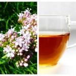Ceai de Valeriană