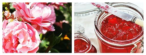 Jeleu de Trandafir Rețetă