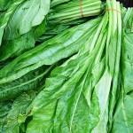 spanac verde