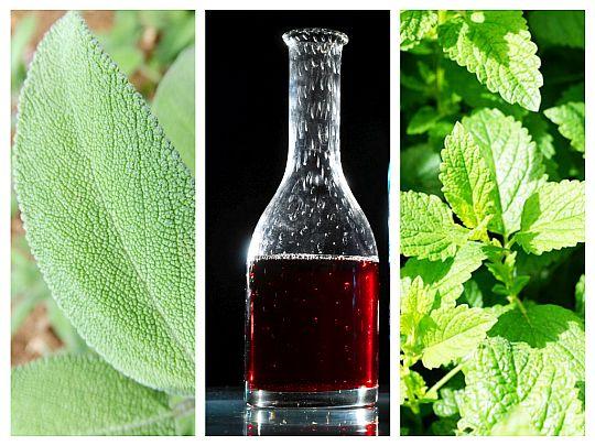 Elixir Pentru Stomac