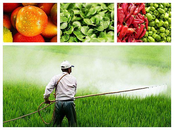 Efectele Expunerii la Pesticidele din Alimente