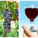 Vinul Roșu Scade Colesterolul