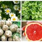 Alimente Bogate în Apigenină