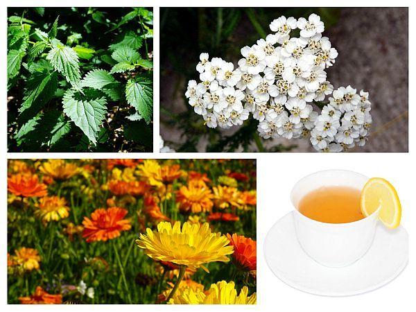 Ceaiul de plante care ajuta la vindecarea cancerului de prostata