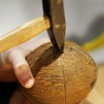 Cum Se Sparge o Nucă de Cocos