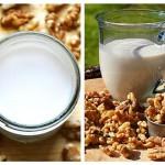 Lapte de Nuci Rețetă