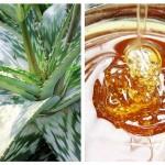 Loțiune cu Aloe și Miere Pentru Ten