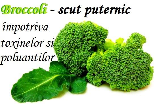 Broccoli - Detoxifică Organismul