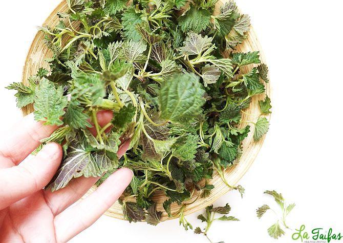 Salată de Urzici