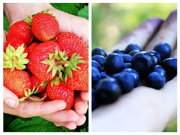 Căpșuni și Afine Pentru Creier