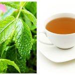 Ceai de Mentă - Memorie