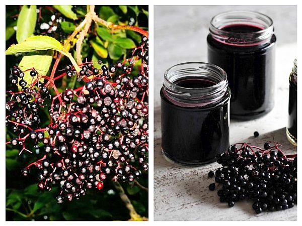 tonic din fructe de soc s