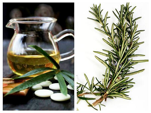 ceai-de-rozmarin