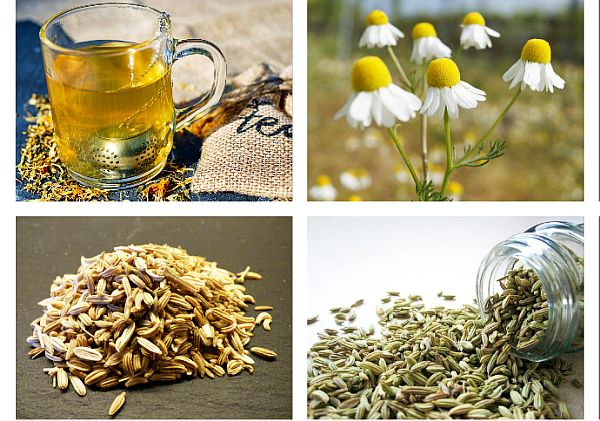 10 plante medicinale benefice pentru stomac