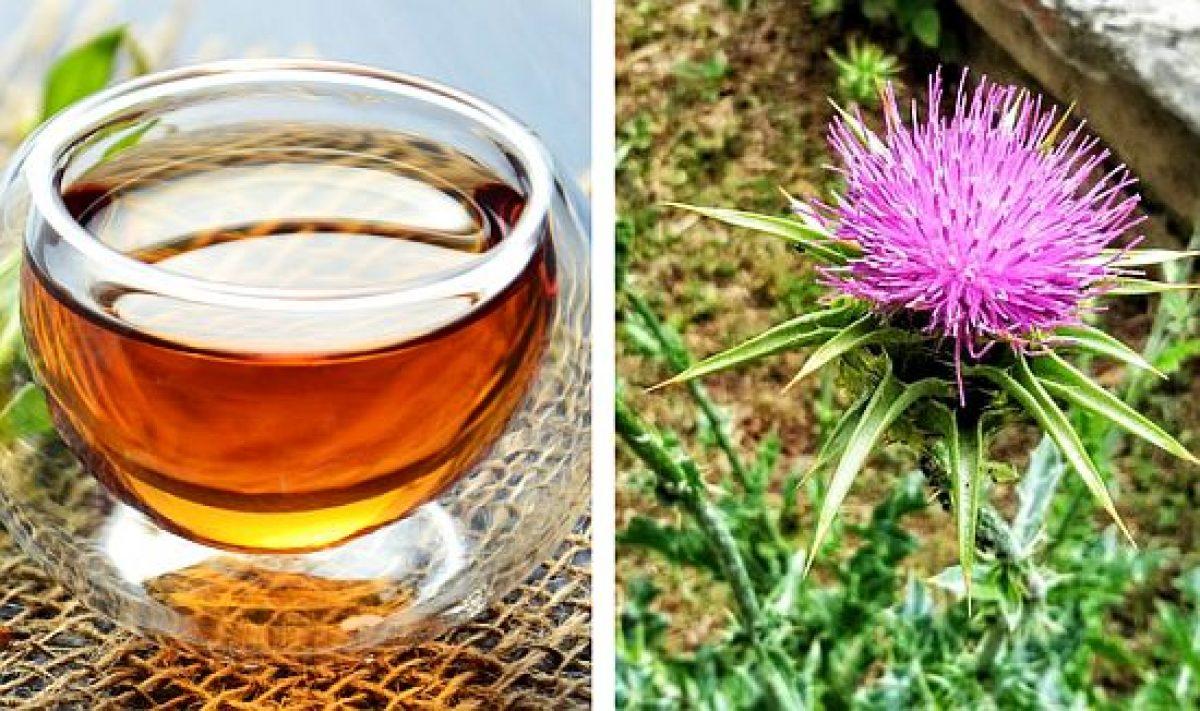 ceaiuri pentru regenerarea ficatului