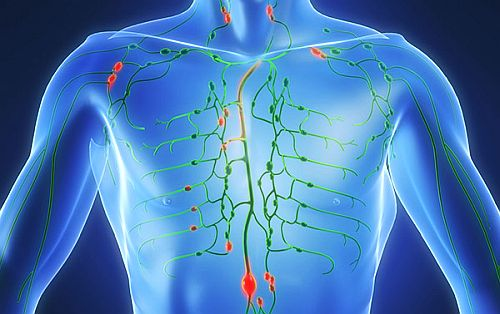 dieta detoxifierea organismului tratamentul clinic al paraziților