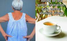 cele mai bune ceaiuri pentru guta