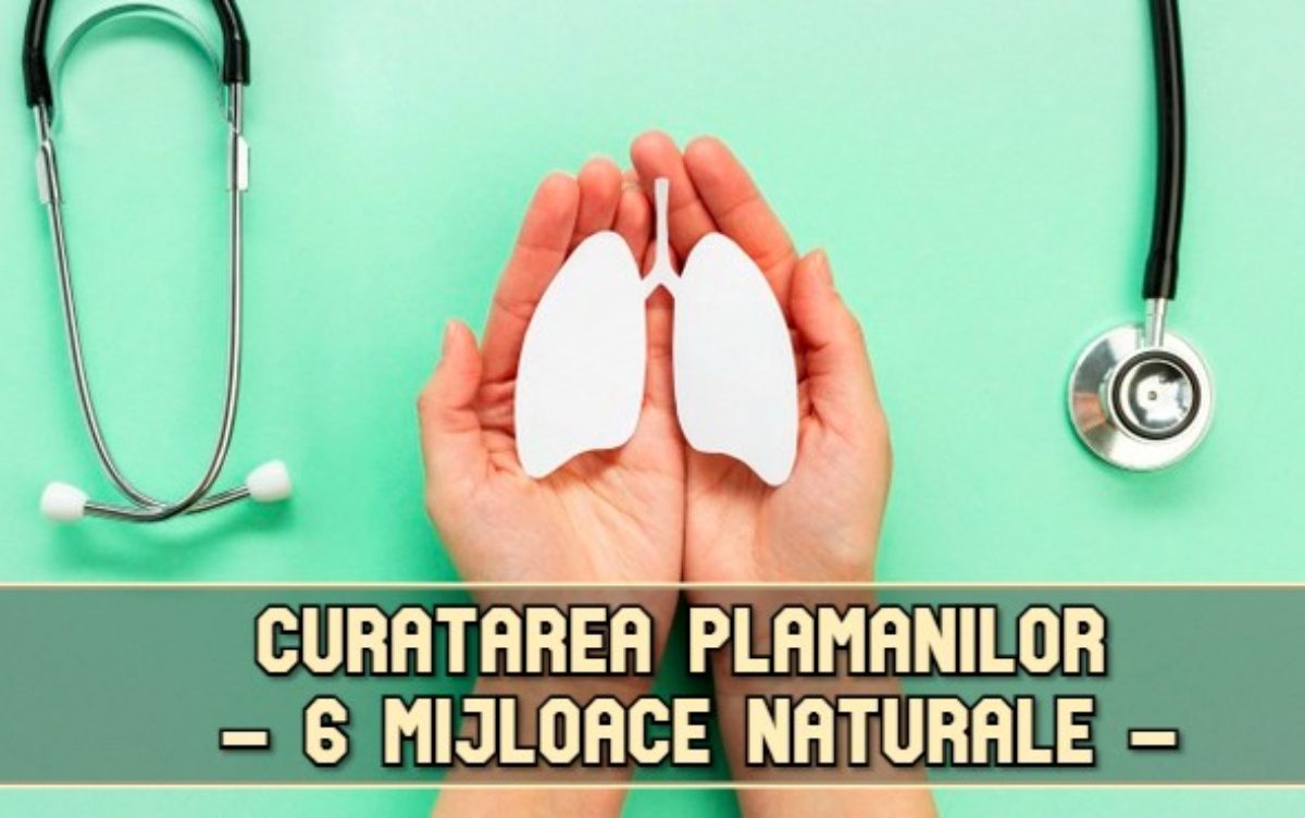 curatarea plamanilor natural)